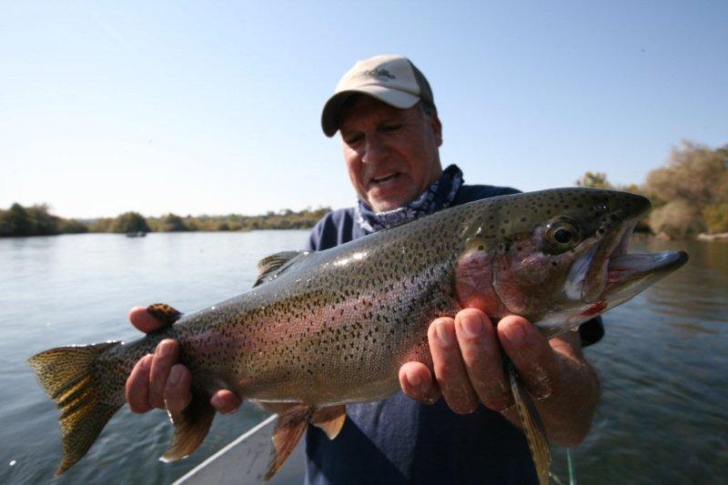 Boise river steelhead fishing report for Boise river fishing
