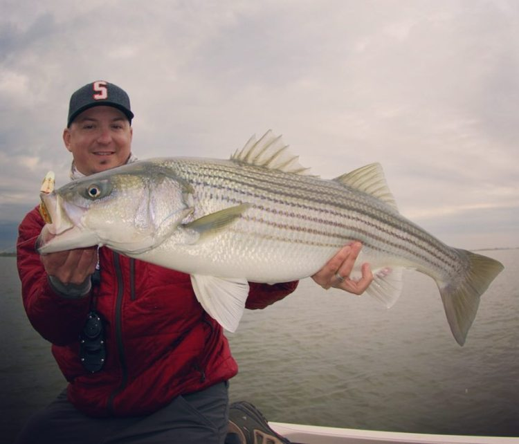 angler in CA Delta with big striper