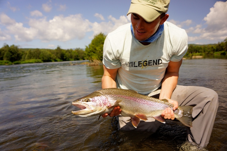 Russian Rainbow Trout