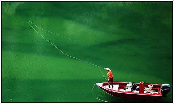 fly fishing McCloud Reservoir