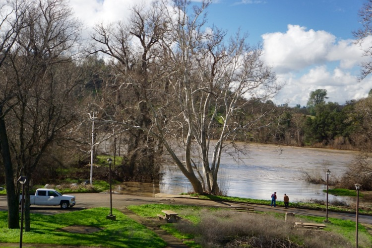 2 locals also came down to inspect the affects of the Sacramento River at the boat ramp under Bend Bridge. Normally there is a 10 foot change in elevation from the top of the ramp to the edge of the river.