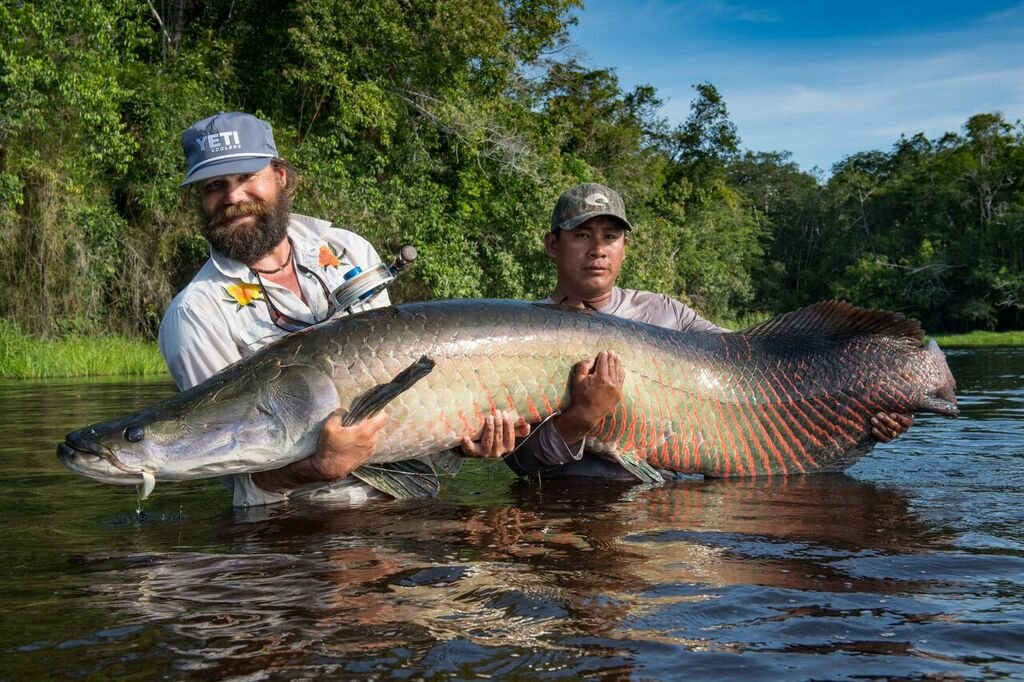 Oliver White holds a fly caught arapaima