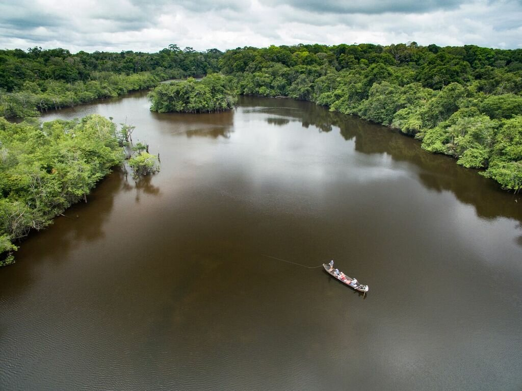 Over head scene of pond in Guyana