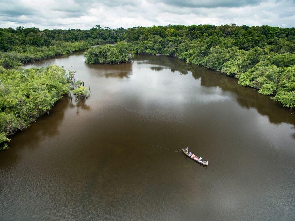 Over head scene of pond in Guyana